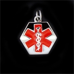 LIFETAG Hexagonal Sterling Medical ID Charm LIFETAG, Sterling, Hexagonal, Medical ID, Charm